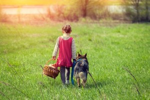 46623309 - little girl walking with dog on the meadow back to camera
